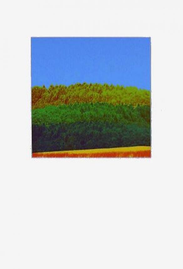 Afbeelding van het kunstwerk 'zomer 1977' van Koos van Tol/Leen van Weelden