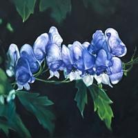 Afbeelding van het kunstwerk 'Soft Moisture' van Dorita Savert