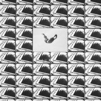 Afbeelding van het kunstwerk 'Dagbad in Memoriam' van Winston Huisman