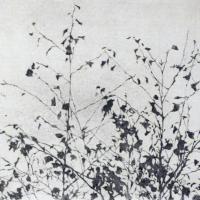 Afbeelding van het kunstwerk 'zonder titel' van Lilly Dresden