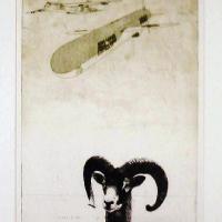 Afbeelding van het kunstwerk 'relatie / rechts' van Walter Lentjes