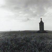 Afbeelding van het kunstwerk 'Hoedic I' van M. Köppen