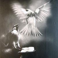 Afbeelding van het kunstwerk 'vogels' van Wim Steffen
