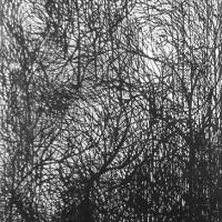 Afbeelding van het kunstwerk 'nacht van de douanier' van John Hartjes