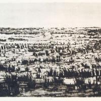 Afbeelding van het kunstwerk 'an der Schlei' van John Hartjes