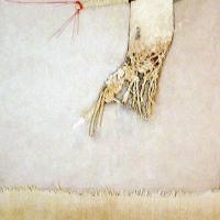 Afbeelding van het kunstwerk 'variaties op een tak' van Tettje van Wageningen